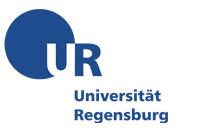 Uni Regensburg - Vergleichende Kulturwissenschaft